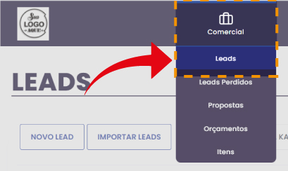 acesso aos leads - Leads